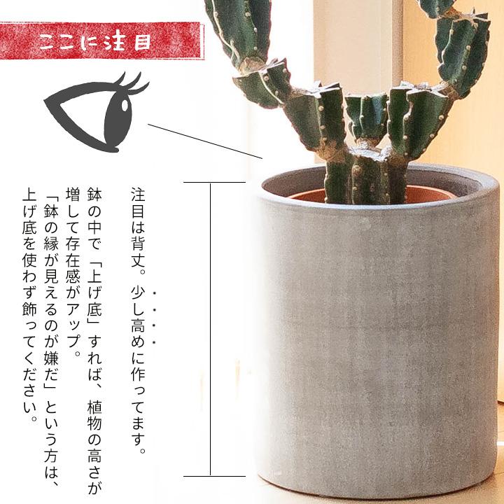 植木鉢の説明