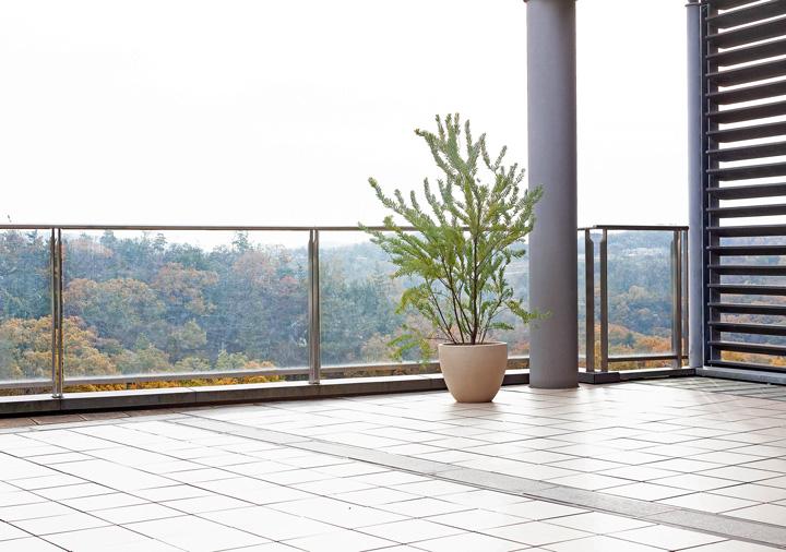 背が高い植木鉢を階段の脇に