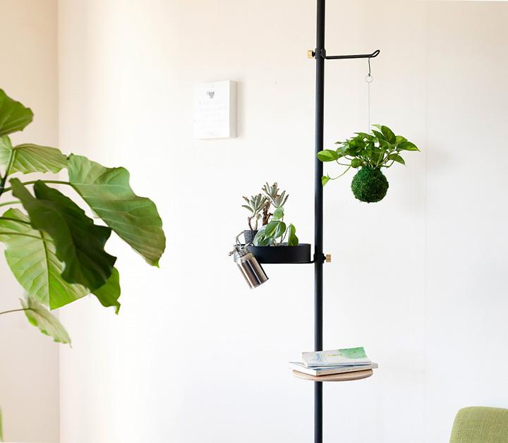 突っ張り棒で吊り下げ植物を飾った写真