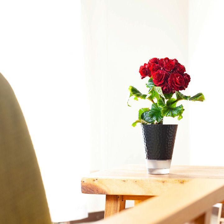 部屋に花がある暮らし