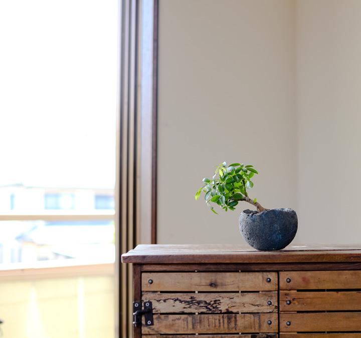 和風 植木鉢