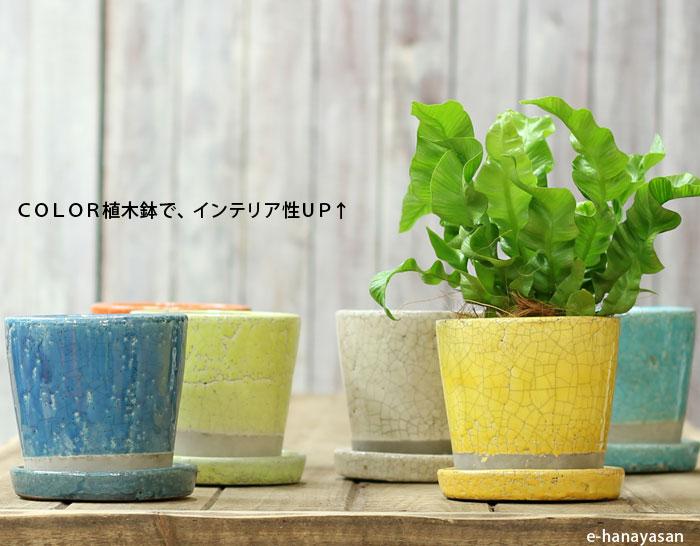 貫入加工の陶器鉢