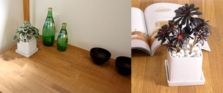 スクエア 陶器鉢