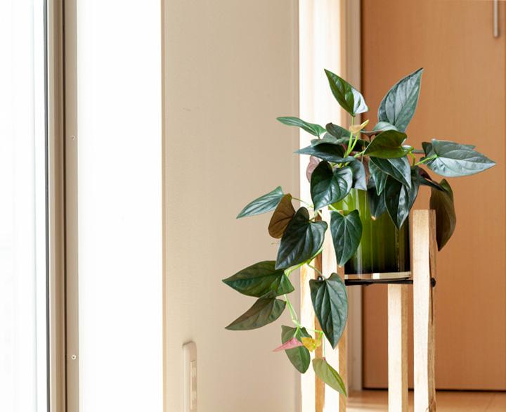 シンプルで飾りやすい木製スタンド