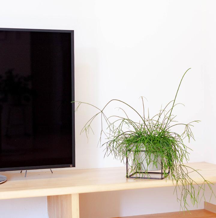テレビ台の横に飾ったイメージ