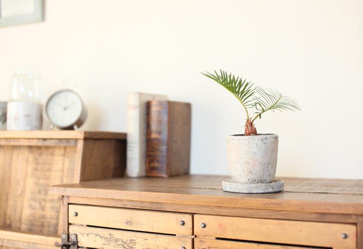陶器鉢 アンティーク