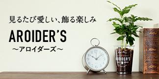 浅岡園芸 AROIDER'S