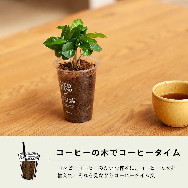 コーヒーを飲みながらコーヒータイム
