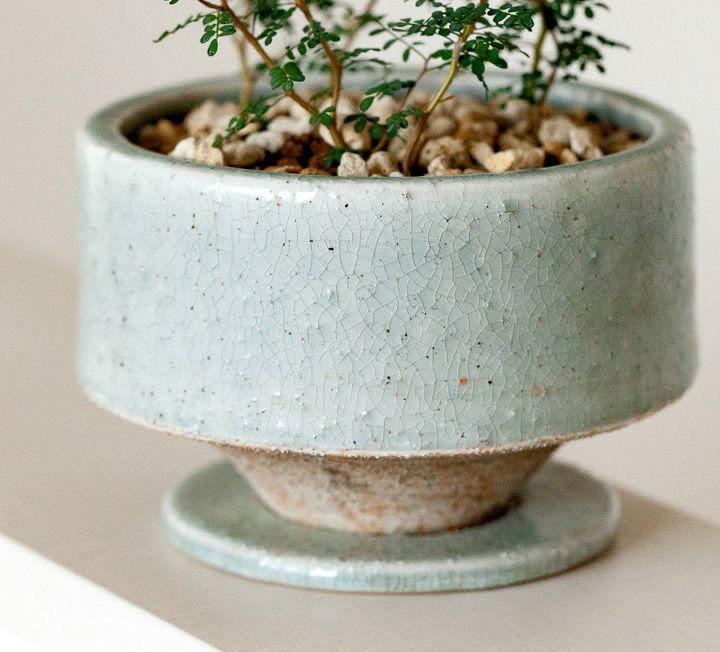 陶器鉢について